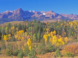San Juan Mountains  Uncompahgre National Forest  Colorado  USA