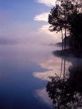 Morning Fog Reflects on a Quiet Lake  Arkansas  USA