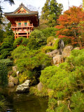 Japanese Tea Garden  Golden Gate Park  San Francisco  California  USA