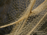 Close-up of a Brown Mesh Fishing Net