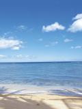 Shadows of Palm Trees on Beach of Calm Ocean