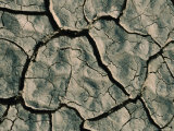 Parched Earth Indicative of Scorching Year-Round Temperatures  Djibouti  Djibouti