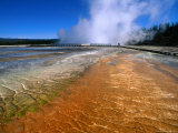 Bacteria Mat and Excelsior Geyser (Mid Way Geyser Basin)  Yellowstone National Park  Wyoming