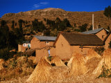 Adobe Houses and Wheat Bundles in Colquecachi District  Amantani Island  Puno  Peru