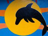 Dolphin Mural Detail on Shop Wall  Puerto Baquerizo Moreno  Ecuador