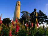 Colombus Statue at Coit Tower  San Francisco  USA
