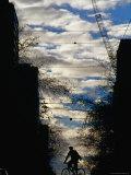 Silhouette of Cyclist on William Street  Melbourne  Australia