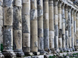 Columns along Cardo  Main Street of Historic Site  Apamea  Hama  Syria