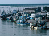 Fishing Trawlers  Alvarado  Mexico