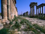 The Cardo Colonnade and Portico of the 1st Century Site of Apamea  Apamea  Tartus  Syria