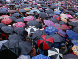 Umbrellas at the Passion Plays During Easter Week  Kalwaria Zebrzydowska  Poland