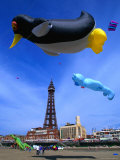 Kite Flying Near Blackpool Tower  Blackpool  Blackpool  United Kingdom  England