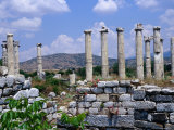 Temple of Aphrodite's Fourteen Columns Dating from 1st Century BC  Nazilli  Aydin  Turkey