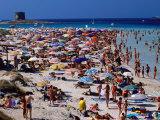 Crowds in Spiaggia Di Pelosa  Stintino  Sardinia  Italy