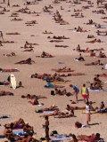 Sunbathers on Bondi Beach  Sydney  Australia