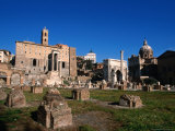 Roman Forum Ruins in the Early Morning  Rome  Italy