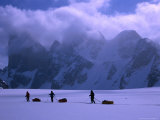 Mt Asgard Behind Sledding Group on Turner Glacier  Auyuittuq NP  Baffin Island  Nunavut  Canada