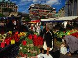 Hotorget Market  Stockholm  Sweden