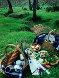 Picnic Set Up  South Australia  Australia