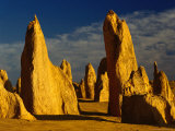 The Pinnacles  Nambung National Park  Western Australia  Australia