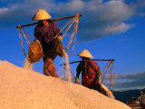 Female Labourers Carrying Sea Salt in Salt Fields of Doc Let Beach  Khanh Hoa  Vietnam