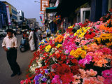 Artificial Flower Seller at Pettah Bazaar  Colombo  Sri Lanka