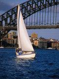 Yachting Below the Harbour Bridge  Sydney  Australia
