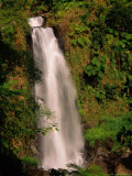 Waterfall in Lush Environment  Morne Trois Pitons National Park  Trafalgar Falls  Dominica