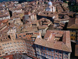 Aerial View of City from Top of Torre Del Mangia Siena  Tuscany  Italy