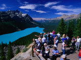 Lookout at Peyto Lake and Mistaya Valley  Banff National Park  Alberta  Canada