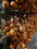 Hollow Gourds Hanging at Shrine  Tokyo  Japan