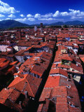 Houses from Above  Lucca  Italy