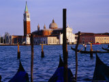 Gondolas and the View from San Marco  Venice  Veneto  Italy