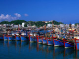 Fishing Fleet in Harbour  Nha Trang  Vietnam