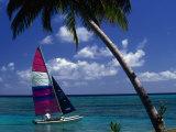 Man Sailing Boat  Wakaya Island  Eastern Division  Fiji
