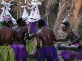 Group of Men Doing Traditional Dance  Papua New Guinea