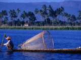 Intha Fisherman with Fishtrap  Inle Lake  Shan State  Myanmar (Burma)