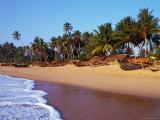 Fishing Boats Lined Up on Tangalla Beach  Tangalla  Southern  Sri Lanka