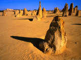 Rock Pinnacles in Desert Nambung National Park  Western Australia  Australia
