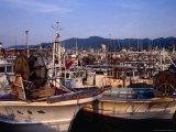 Fishing Boats in Port  Wajima  Japan