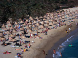 Crowded Beach in Front of Palm Trees  Vai  Greece