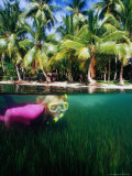 Woman Snorkelling  Micronesia