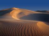 Sand Dunes  Eucla National Park Western Australia  Australia