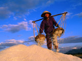 Female Labourer Carrying Sea Salt in Salt Fields of Doc Let Beach  Khanh Hoa  Vietnam