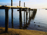 Jetty in St Georges Bay St Helens  Tasmania  Australia