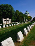 Headstones from the Two World Wars at Zentralfriedhof (Central Cemetery)  Vienna  Austria
