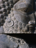 Detail of Statue Persepolis (Takht-E Jamshid)  Fars  Iran