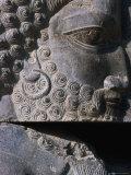 Detail of Statue Persepolis (Takht-E Jamshid)  Fars  Iran