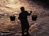 Man Carrying Buckets  Vietnam