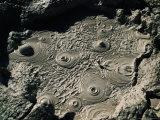 Bubbling Mud from Geysers Near Sol De Manana  Sol De Manana  Bolivia